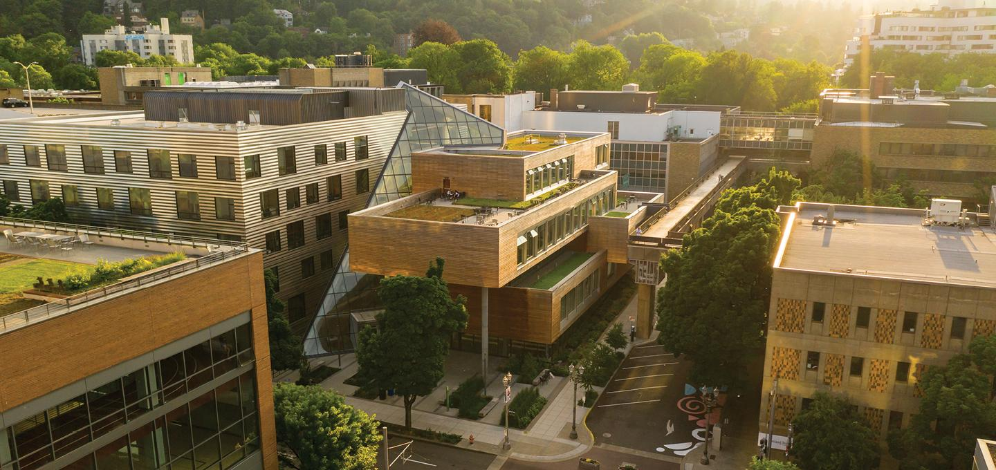 Aerial view of the Karl Miller Center